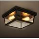 Rh Cambridge Flush Mount Edison Ceiling Lamp